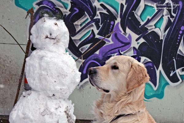 Jarvis und der Schneemann